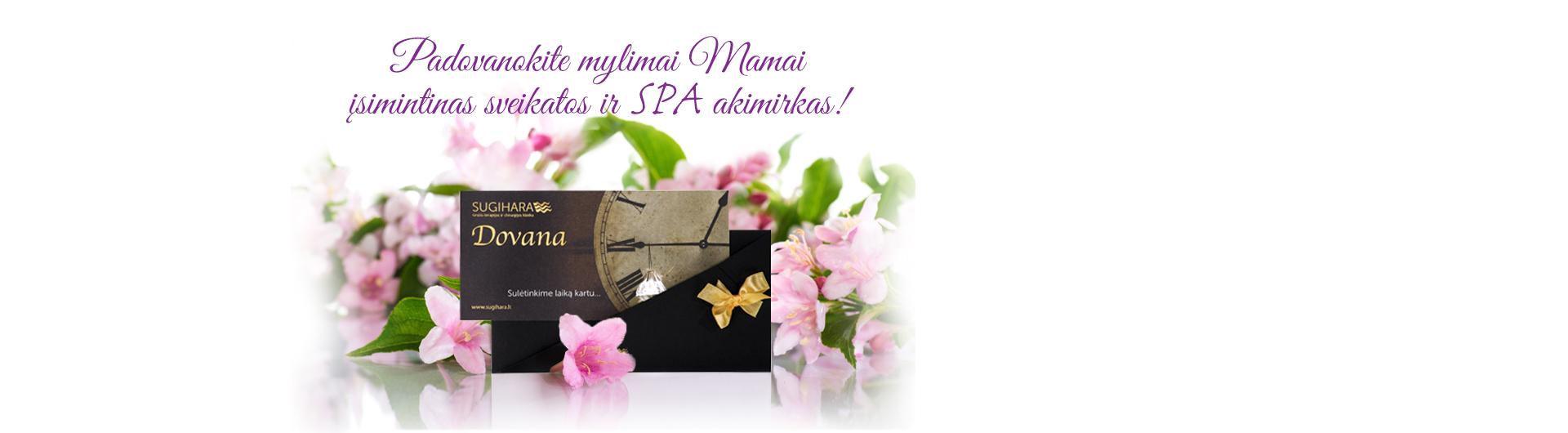 Motinos diena_1920x530